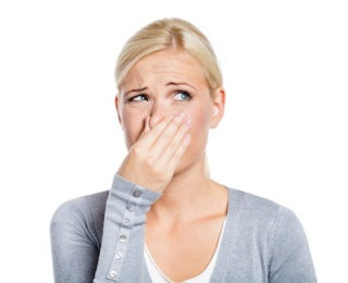 Top 5 Tips for Removing Household Odors